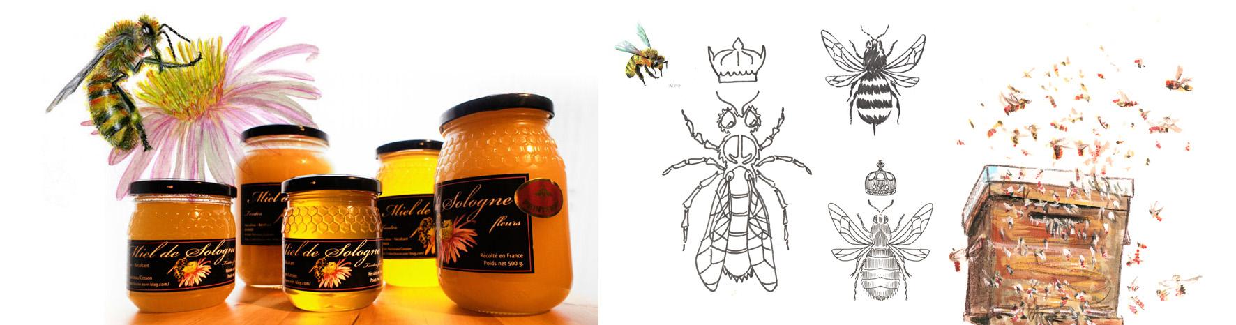 Etiquettes Miel Biologique de Sologne - 2012