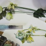 Roses Fânées