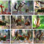 Vadim Trunov – photographe insolite