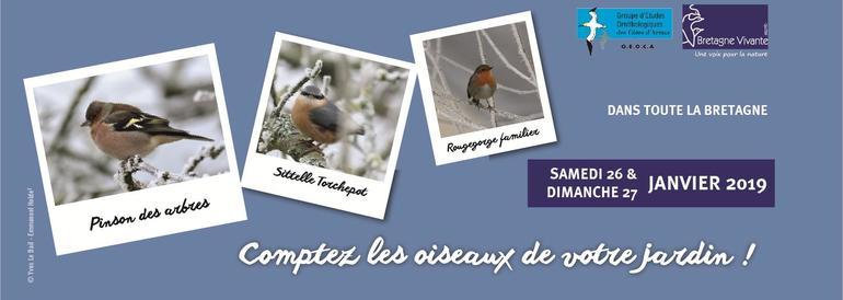 Comptez les oiseaux pendant 1h ce week-end!