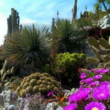 des Jardins à visiter