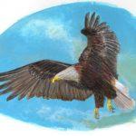 Mon Bestiaire N°2 Aigle