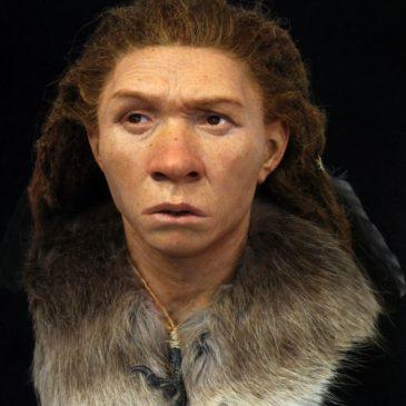 à quoi ressemblaient nos ancêtres?